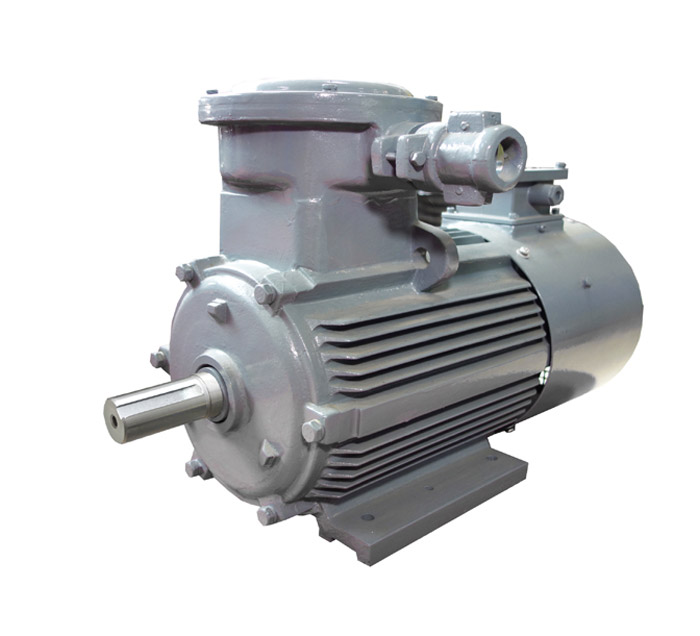 YBBP Series Explosion-proof Variable-Frequency Adjustable-speed Three Phase Induction Motors