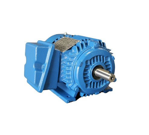 NEP Series Premium Efficient NEMA motor